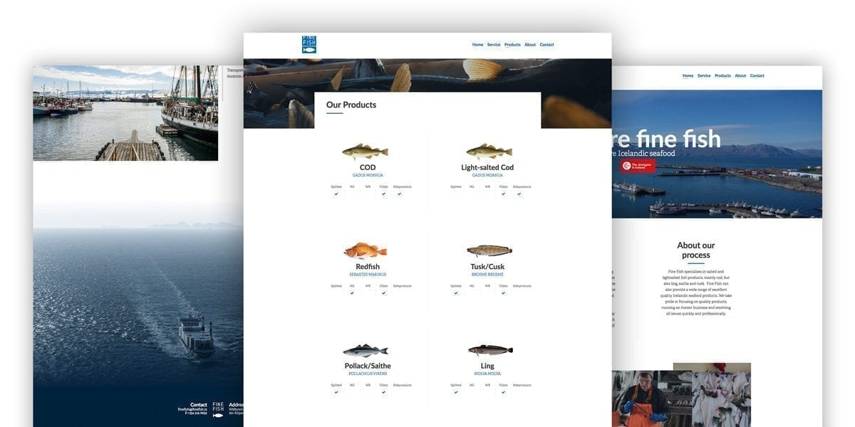 Fine Fish - Avista Digital Agency