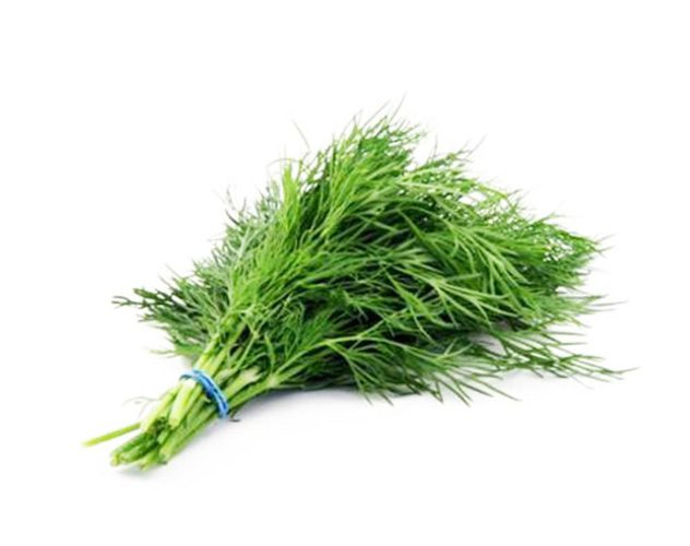 Dill erl. 50g